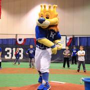 Royals Fan Fest 2015
